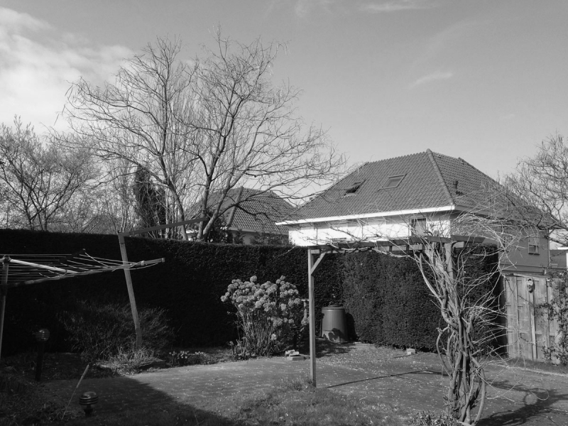 achtertuin-OUD-zw